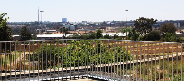 Egoli: A commanding view of the city of Gold greets you when you reach the top of the ramp. The modern skyline is reflective of the accomplishments throughout the decades of Johannesburg. It is important to bear in mind that the Chinese people played a role in the development of our city. Th Chinese helped in the mining process in the early 1900's when they mined gold. Gold was the key to the establishment Johannesburg and the history of discrimination and segregation in this city. Photo: Prelene Singh